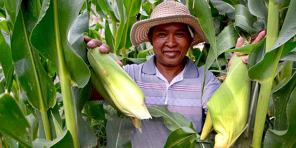 Giving farmers easy access to relevant and accurate agriculture and market data can help them improve yields and income by making informed decisions. Photo credit: Asian Development Bank.
