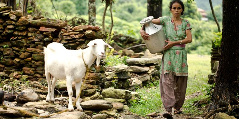 When the ADB was putting together a community-based project to improve Nepal's water supply, 30% of Nepal's population of 23.2 million had no access to basic water and sanitation services despite the country accounting for over 2% of the world's water resources. Photo credit: ADB.