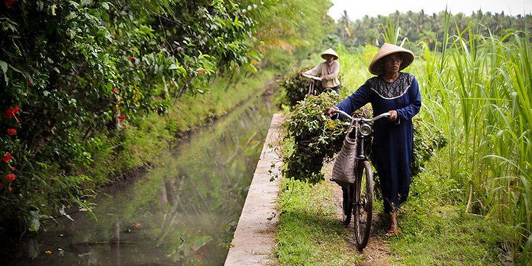 Value addition in agribusiness may be integrated into different stages of the value chain, including the transportation of produce. Photo credit: ADB.