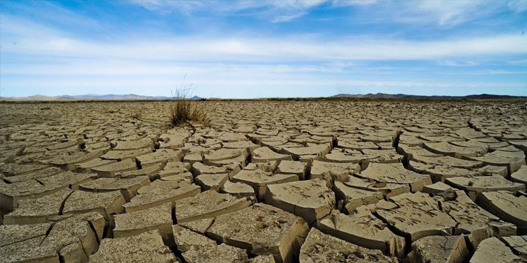 Drought conditions in Mongolia. Environmental risks, such as extreme weather events and climate change adaptation failure, have been increasing and the trend is expected to continue. Photo credit: ADB.