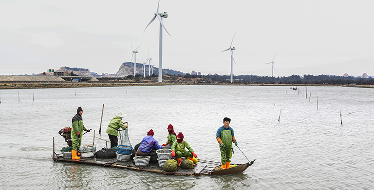 The study looked at the economic viability of alternative technologies that could reduce emissions before or in 2030 at a cost of no more than $100 per ton of carbon dioxide equivalent. Photo: ADB.