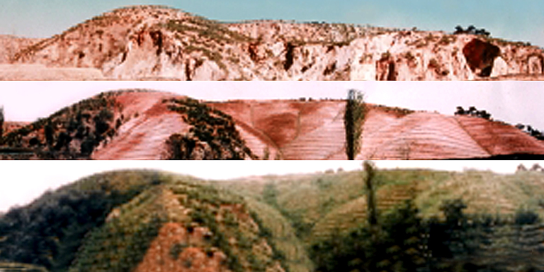 """A photo shows """"before and after"""" images of a mountainside which was previously barren. Photo credit: KDevelopedia."""
