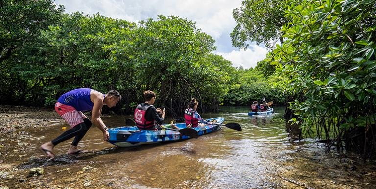 Highly tourism-dependent Palau could benefit from a travel bubble or green corridor partnership with East Asia, its biggest tourism market. Photo credit: ADB.