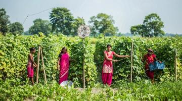 Women's empowerment is a complex process that requires integrated and innovative solutions. Photo credit: ADB.