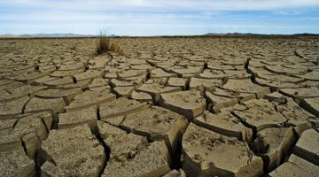 In Mongolia, climate change has worsened the effects of a dzud, an unusually dry summer followed by a severe winter. The phenomenon can be devastating to livestock on which many people rely for food and livelihood. Photo credit: ADB.
