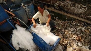A law in the Philippines encourages communities to set up material recovery facilities, which offer livelihood incentives for people to recycle waste. Photo credit: ADB.