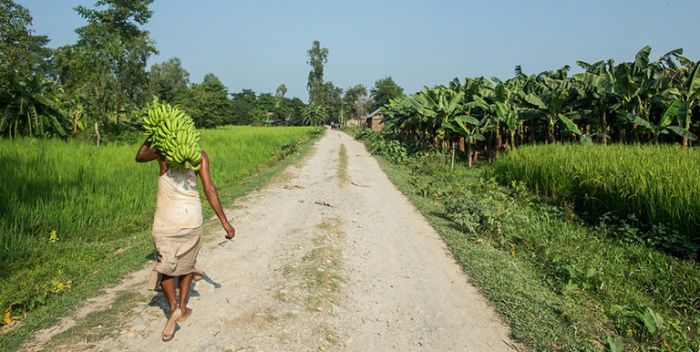 Rural infrastructure investments like farm-to-market roads can lower marketing margins and post-harvest losses. Photo credit: ADB.